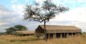 Serengeti tent camp