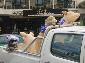 Everybody gets into the act during Australia Day