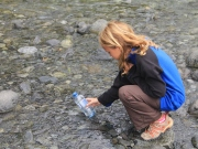 The water on the way to Milford Sound was pure enough to drink from the creek