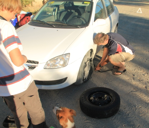 Note the dog, right after the picture he peed all over our spare!