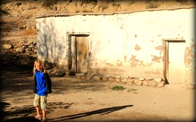 Adobe houses are the norm here in the desert